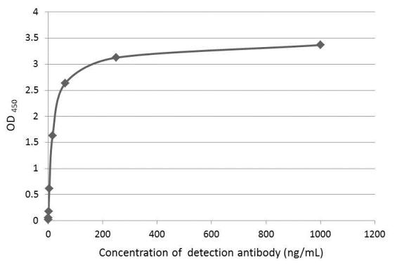 An ELISA plate is coated with 50 ?L of AXL recombinant protein at concentration of 4 ?g/mL. The coated protein is detected with anti-AXL antibody (GRP526) at concentration ranged from 0.25 to 1000 ng/mL.
