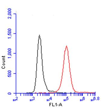 CD45 antibody  (GRP601) detects CD45 protein by flow cytometry analysis. Sample:  THP-1 cell. Black: Unlabelled sample was used as a control. Red:  CD45 antibody  (GRP601)  dilution: 1:50.