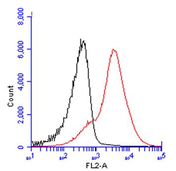 CD45 antibody (GRP601) detects CD45 protein by flow cytometry analysis. Sample: mouse splenocytes cell fixed in 4% paraformaldehyde at 4ºC for 15 min. Black: Unlabelled sample was used as a control. Red: CD45 antibody (GRP601) dilution: 1:50. Acquisition