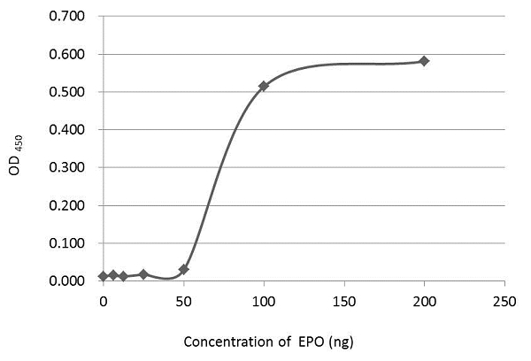 An ELISA plate is coated with 50 μL of EPO recombinant protein at concentration ranged from 0.125 μg/mL to 4 μg/mL. The coated protein is detected with EPO antibody (GRP468) at 1 μg/mL.