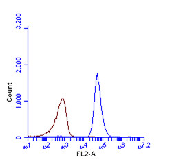 LC3B antibody (GRP521) detects LC3B protein by flow cytometry analysis. Sample: HeLa cell fixed in 4% paraformaldehyde at 4ºC for 5 min. Brown: Unlabelled sample was also used as a control. Blue: LC3B antibody (GRP521) dilution: 1:100. Acquisition of >20